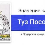Туз Посохов (Жезлов) значение в картах Таро