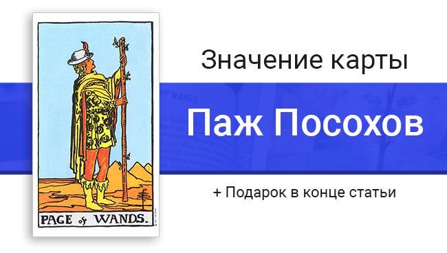 Баннер для статьи о значениях карты Таро Пажа Посохов (Жезлов)