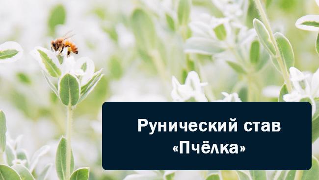 Рунический став Пчёлка