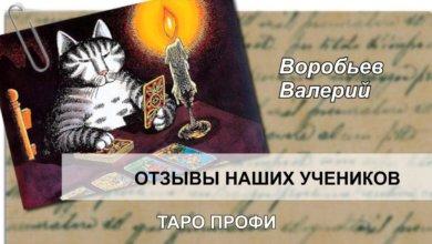 Воробьёв Валерий делится впечатлениями после курса Таро Профи