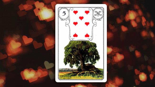 Дерево Ленорман значение в любви