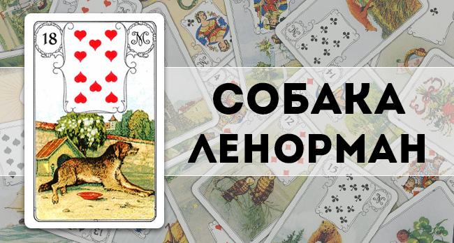 Собака Ленорман