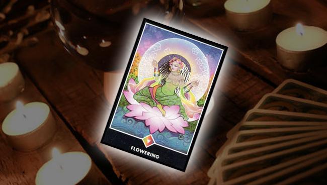 Королева Радуги (Цветение) Ошо Дзен Таро: эзотерическое значение карты