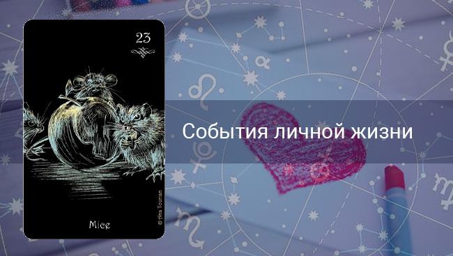 События личной жизни Львов в октябре 2020