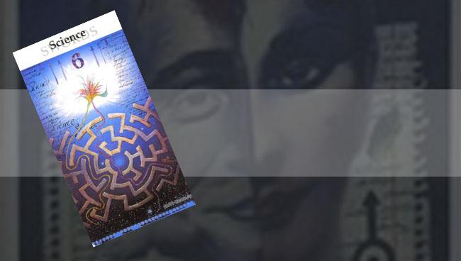 Таро Рериха 6 Мечей